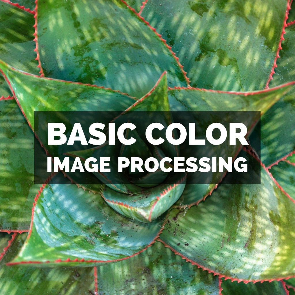Basic Color Image Processing In Adobe Photoshop Lightroom Classic