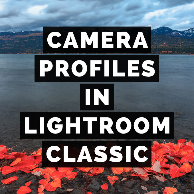 Camera Profiles Take Center Stage In Adobe Lightroom Classic