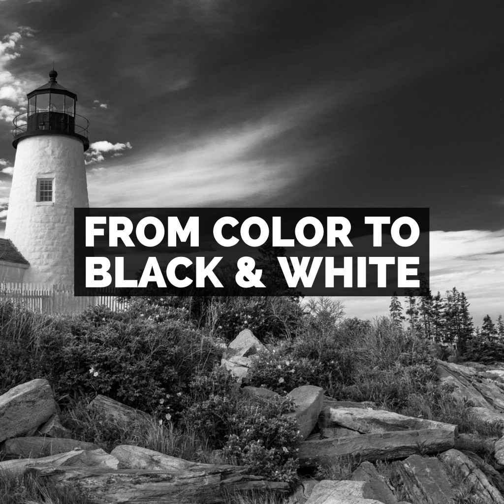Turning A Color Photo Into A Black & White Using Adobe Lightroom Classic