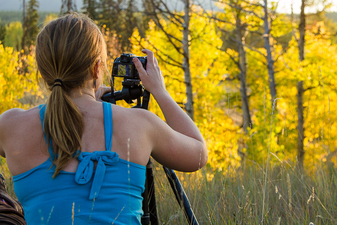 Photographer And Fall Aspen Trees