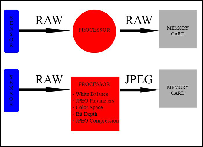 Jpeg vs raw image capture processing chart
