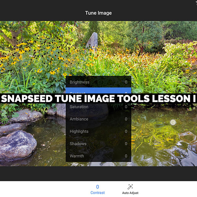 Snapseed's Tune Image Tools