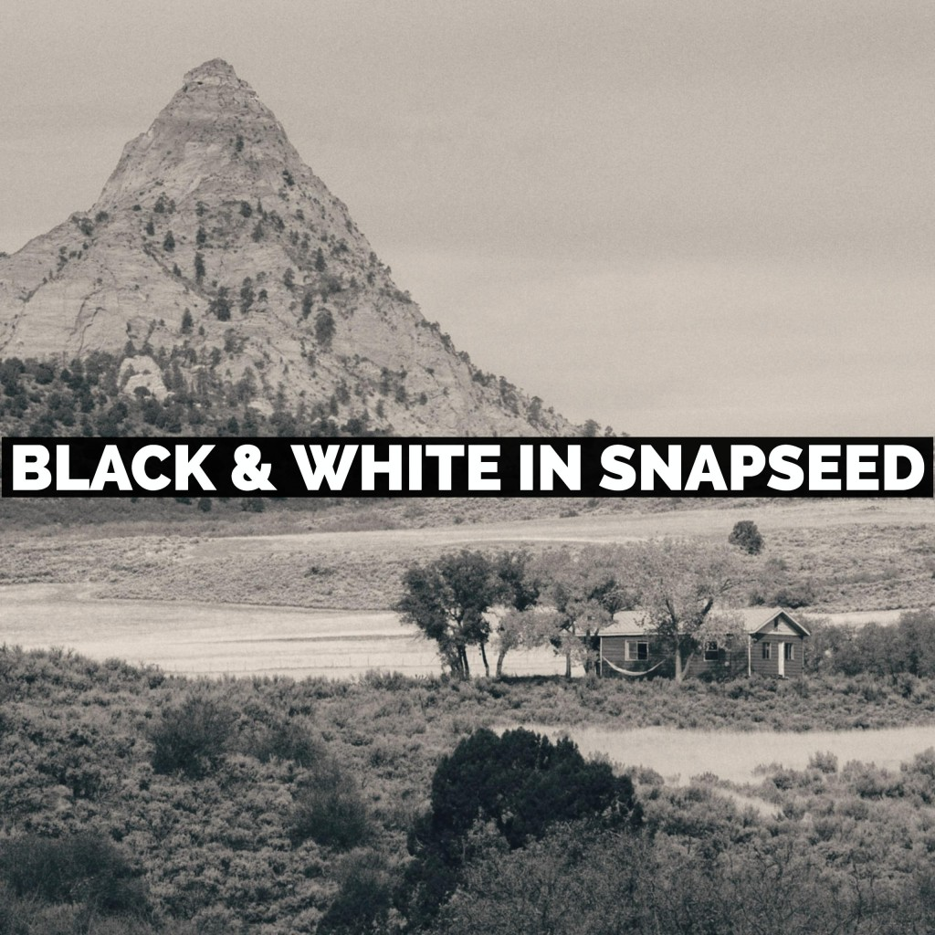 How To Use The Black And White Filter In Snapseed