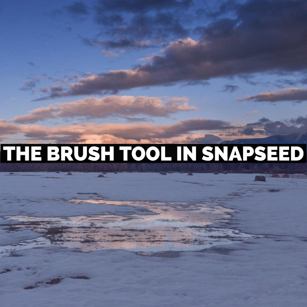How To Use The Brush Tool In Snapseed From Google