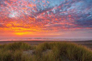 Coast of Oregon Sand Dune Long Exposure Sunset