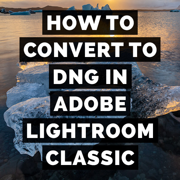How To Convert To Dng In Adobe Photoshop Lightroom Classic