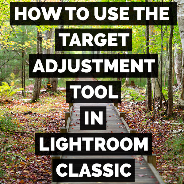 How To Use The Target Adjustment Tool In Adobe Photoshop Lightroom Classic