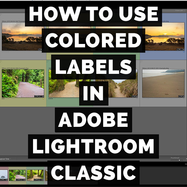 How To Use Colored Labels In Adobe Photoshop Lightroom Classic