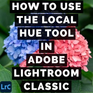 How To Use The Local Hue Tool In Adobe Photoshop Lightroom Classic THM